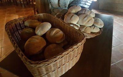 Obisk Hiše dobrega kruha